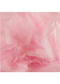 Baby Pink Decorative Feathers - 50g