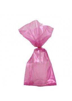 Hot Pink Small Cellophane Party Bags ( Pack of 25)