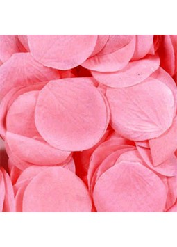 Baby Pink Rose Petals (Pack of 300)